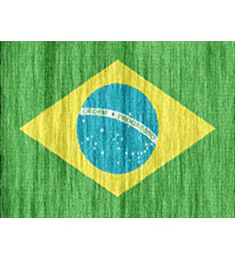 Brazil Consumer Email Database qualified
